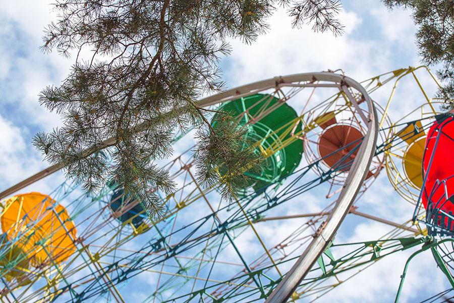 Фестиваль творческих индустрий пройдёт в парке «У моря Обского»