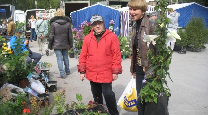 Осенняя ярмарка: цветы и люди