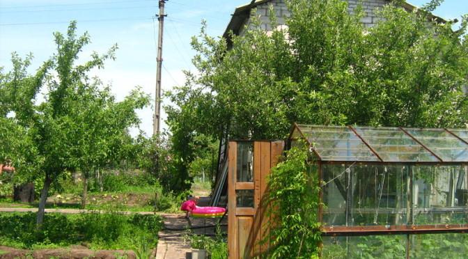 Будущее садовых участков — в руках садоводов