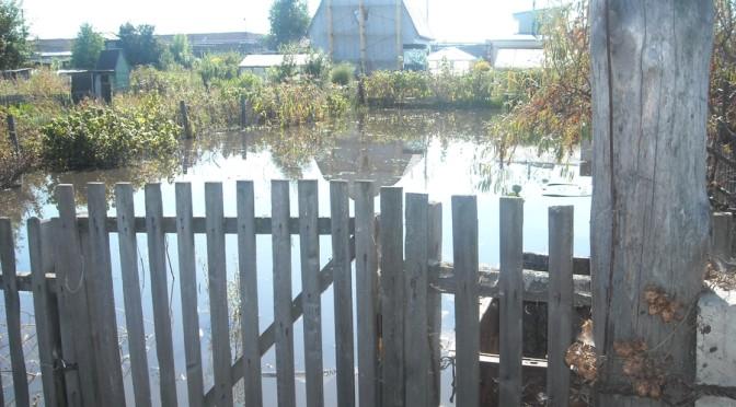 Потоп — беда общая